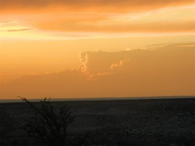 TWIN PEAKS RANCH - LOT 4, Dryden, TX 78851 - Photo 2