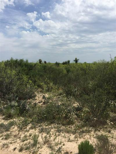CR 1865 N PUMPVILLE, Pumpville, TX 78871 - Photo 1