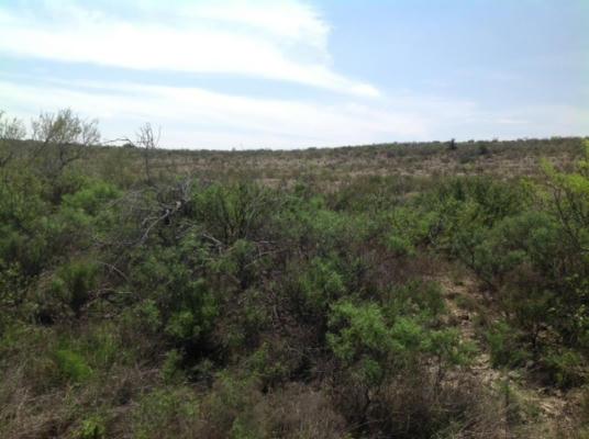 HERITAGE CANYON RANCH (PHASE I), Dryden, TX 78851 - Photo 1