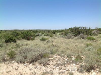 LANGTRY PROPERT TRACT 17, DEL RIO, TX 78871 - Photo 2