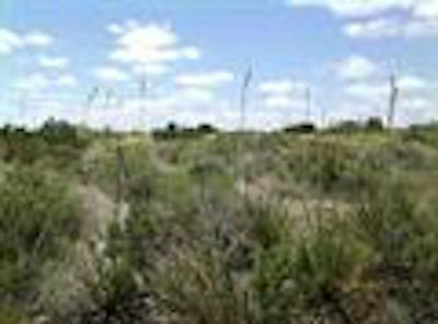 WHITETAIL CREEK RANCH TRACT 36 & 37 (326 ACRES), Dryden, TX 78851 - Photo 1