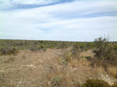 HERITAGE CANYON RANCH (PHASE III), Dryden, TX 78851 - Photo 2