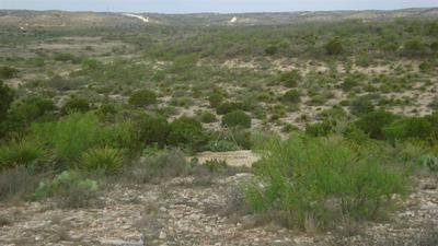 HERITAGE CANYON RANCH (PHASE I) TRACT 14, Dryden, TX 78851 - Photo 1