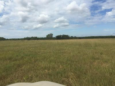 18 ACRES N HWY 331, Laurel Hill, FL 32567 - Photo 2