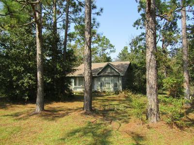 255 PARADISE ISLAND DR, Defuniak Springs, FL 32433 - Photo 1