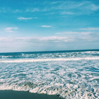 LOT 30 BEACH VIEW DRIVE, INLET BEACH, FL 32461 - Photo 1