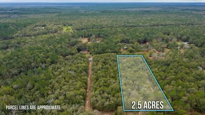 LOT 13 COUNTRY LIVING ROAD, Baker, FL 32531 - Photo 2