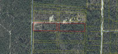 5.7 ACRES WATSON ROAD, Defuniak Springs, FL 32433 - Photo 1
