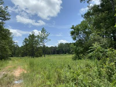 TBD MILLSIDE ROAD, Laurel Hill, FL 32567 - Photo 2