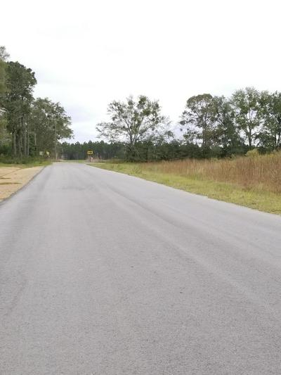 34 ACRES LUDLUM ROAD, Laurel Hill, FL 32567 - Photo 2