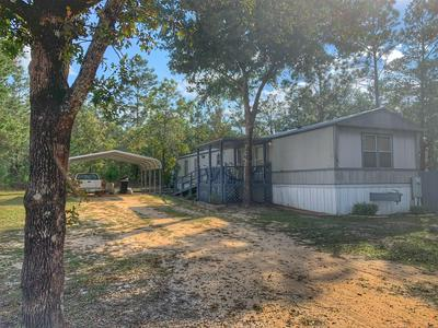 264 E TIGER LILY LN, Defuniak Springs, FL 32433 - Photo 1