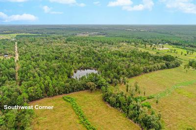 66 ACRES HOLBROOK LANE, Laurel Hill, FL 32567 - Photo 2