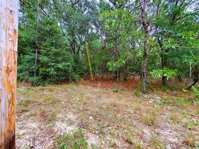1.66 AC XX BOUNDRY LANE, Holt, FL 32564 - Photo 2
