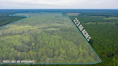 233 ACRES PLYMPTON ROAD, Laurel Hill, FL 32567 - Photo 2