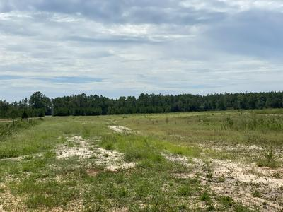 4.15 AC OUTLOOK ROAD, Milton, FL 32583 - Photo 1