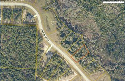 LOT F4 WAYNE ROGERS ROAD, Crestview, FL 32539 - Photo 1