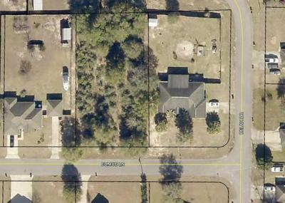 LOT 24 EUNICE LANE, Baker, FL 32531 - Photo 2