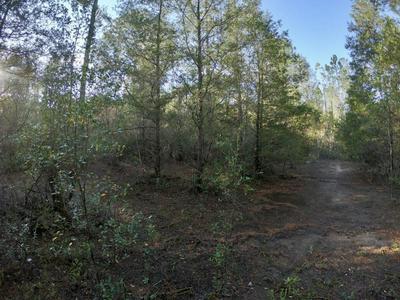 1.10 ACRES LEISURE AVENUE, Holt, FL 32564 - Photo 2
