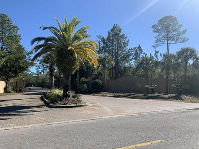 12 SECLUSION WAY, Santa Rosa Beach, FL 32459 - Photo 2