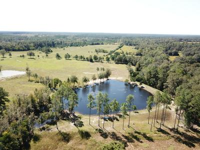 2605 COUNTY HIGHWAY 2, Laurel Hill, FL 32567 - Photo 2