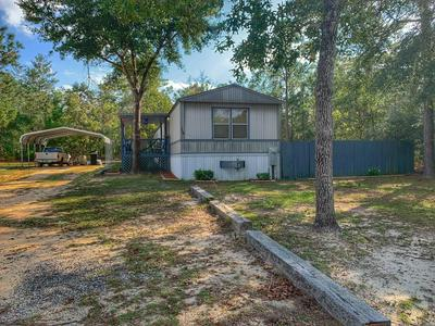 264 E TIGER LILY LN, Defuniak Springs, FL 32433 - Photo 2