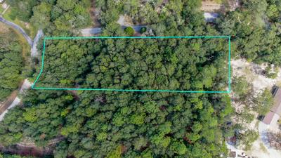 LOT 48A LAUNCH ROAD, Defuniak Springs, FL 32433 - Photo 2