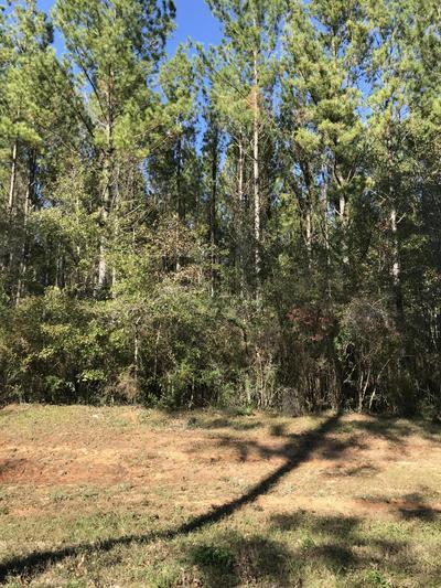 XX WILLIAMS ROAD, Defuniak Springs, FL 32433 - Photo 2