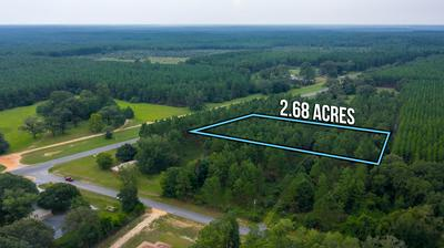 2.68 ACRES HWY 85 N, Laurel Hill, FL 32567 - Photo 2