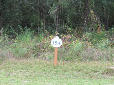 15 SUN BEAR CIR, Freeport, FL 32439 - Photo 1