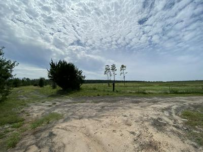 6.43 AC OUTLOOK ROAD, Milton, FL 32583 - Photo 2