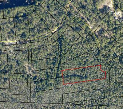 1.48 ACRE LEISURE AVENUE, Holt, FL 32564 - Photo 1