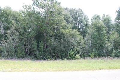 10.79 AC WILKERSON BLUFF ROAD, Holt, FL 32564 - Photo 2