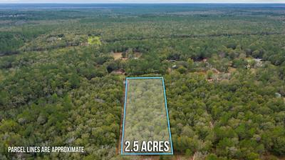 LOT 14 COUNTRY LIVING ROAD, Baker, FL 32531 - Photo 2