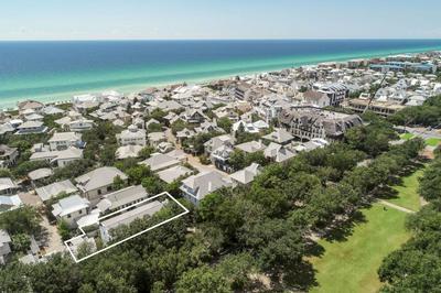 67 DUNMORE TOWN LN, INLET BEACH, FL 32461 - Photo 1