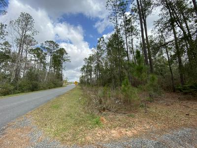125 AC GILMORE ROAD, Holt, FL 32564 - Photo 1