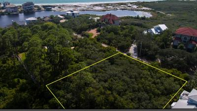 10 LOON LAKE DR, SANTA ROSA BEACH, FL 32459 - Photo 2