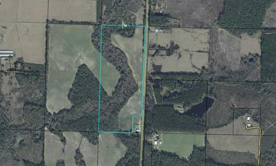 145.5 ACRE HWY 81 NORTH, Westville, FL 32464 - Photo 1