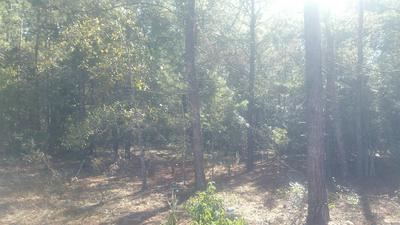 2 LOTS PONDEROSA BOULEVARD, Defuniak Springs, FL 32433 - Photo 2