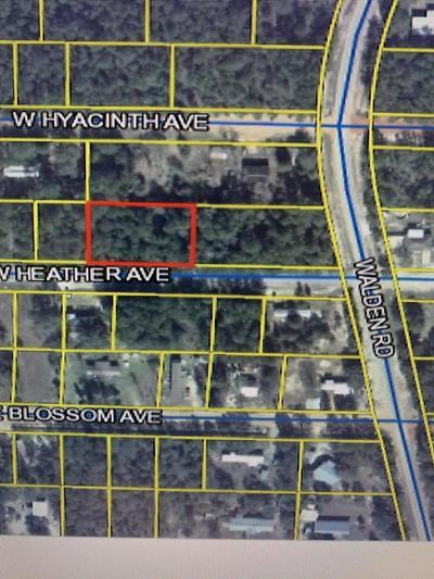 15&16 W HEATHER AVE, Defuniak Springs, FL 32433 - Photo 1
