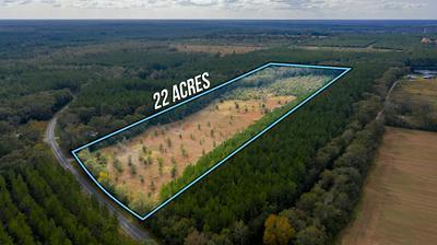 22 ACRES WILLIAMS ROAD, Defuniak Springs, FL 32433 - Photo 2
