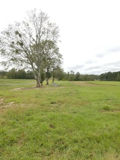 34 ACRES LUDLUM ROAD, Laurel Hill, FL 32567 - Photo 1