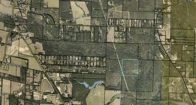 40 ACRES, Baker, FL 32531 - Photo 1