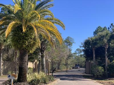 12 SECLUSION WAY, Santa Rosa Beach, FL 32459 - Photo 1