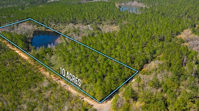 10 ACRES BUCK TYNER, Laurel Hill, FL 32567 - Photo 1