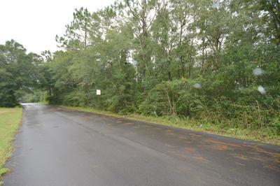 2 LOTS GARRETT MILL ROAD, Baker, FL 32531 - Photo 2