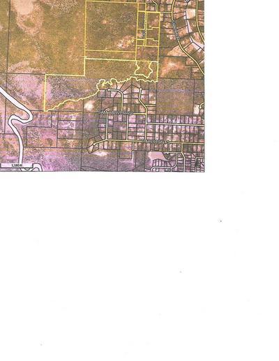 XXXX LINDLEY ROAD, Crestview, FL 32536 - Photo 1