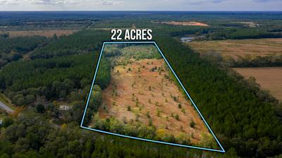 22 ACRES WILLIAMS ROAD, Defuniak Springs, FL 32433 - Photo 1