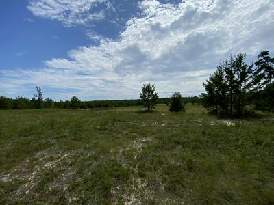 6.43 AC OUTLOOK ROAD, Milton, FL 32583 - Photo 1
