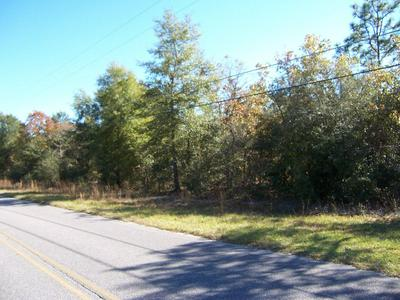 4 AC MARTIN ROAD, Defuniak Springs, FL 32433 - Photo 2