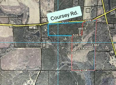 XXX COURSEY ROAD, Westville, FL 32464 - Photo 1